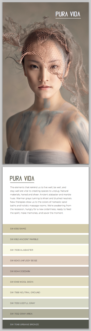 6 Words to Describe PURA VIDA by Sherwin Williams