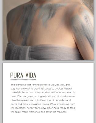 6 Words to Describe PURA VIDA by SherwinWilliams